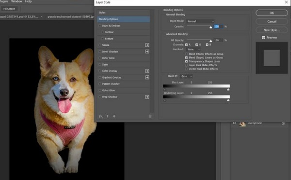 فتوشاپ عکس سگ